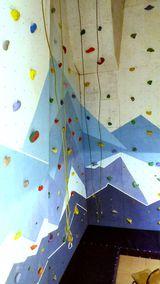 Фитнес центр Скалодром Fun Hall, фото №2